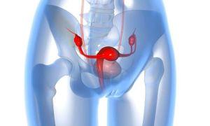 Диагностика заболевания матки на МРТ: когда и как проводят, результаты обследования