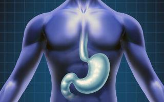 Все аспекты проведения рентгенографии пищевода и желудка и ее отличия от рентгеноскопии