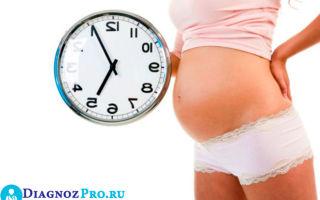 Сроки планирования беременности после гистероскопии с выскабливанием и без него