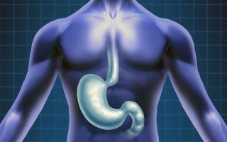 Что лучше пройти — рентген желудка или ФГДС? Особенности видов диагностики и их результат