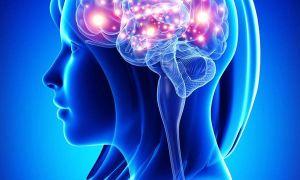 КТ обследование головного мозга: виды, показания, преимущества