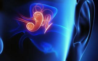 Что показывает рентген височной кости и уха в различных укладках