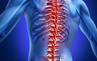 Обследование позвоночника на МРТ — подготовка, проведение процедуры и результат