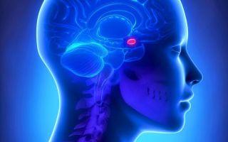 Зачем делать МРТ гипофиза?