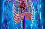 Обследование органов грудной клетки с помощью КТ — описание процедуры, ее виды и особенности