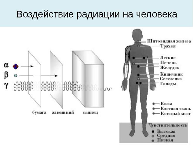 Воздействие на разные органы