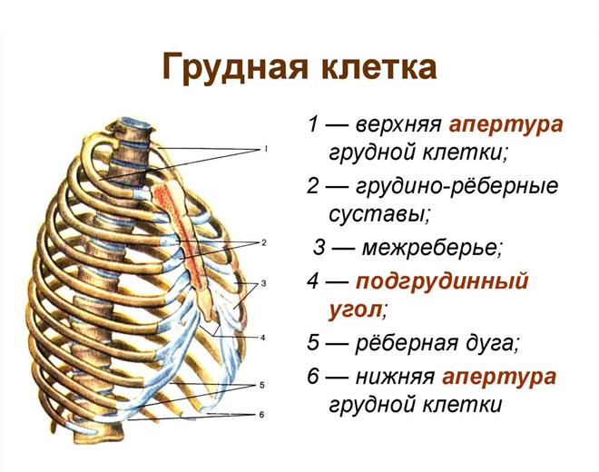 Схема с пояснениями