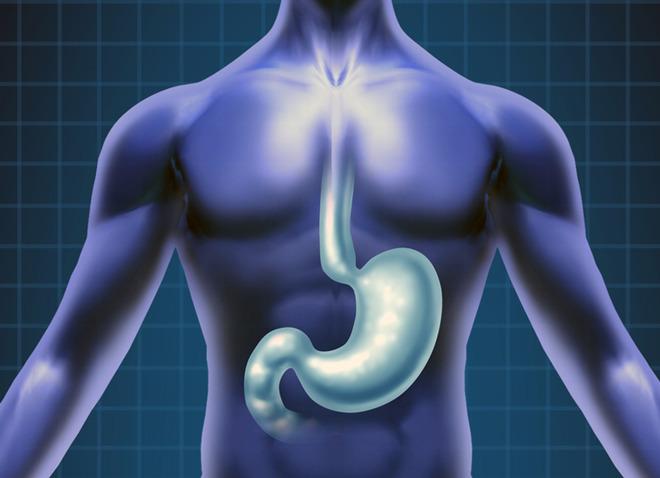 Как проходит рентген желудка и пищевода